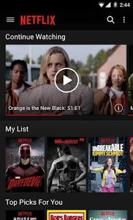 Netflix pc screenshot 1
